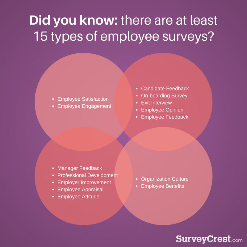 Different Types of Employee Engagement Survey