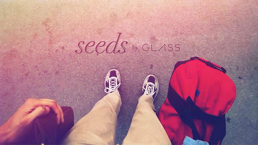 Google Glass: Seeds